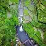 wisata songgon banyuwangi