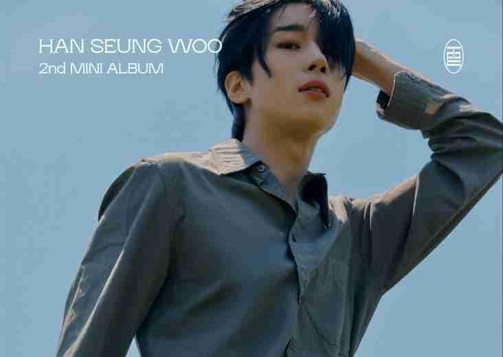 lirik lagu See You Again Han Seung Woo terjemahan